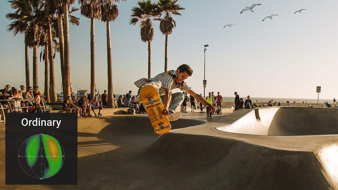 Image of FocusBlur example of scene Skateboarding in the park FocusBlur Off.